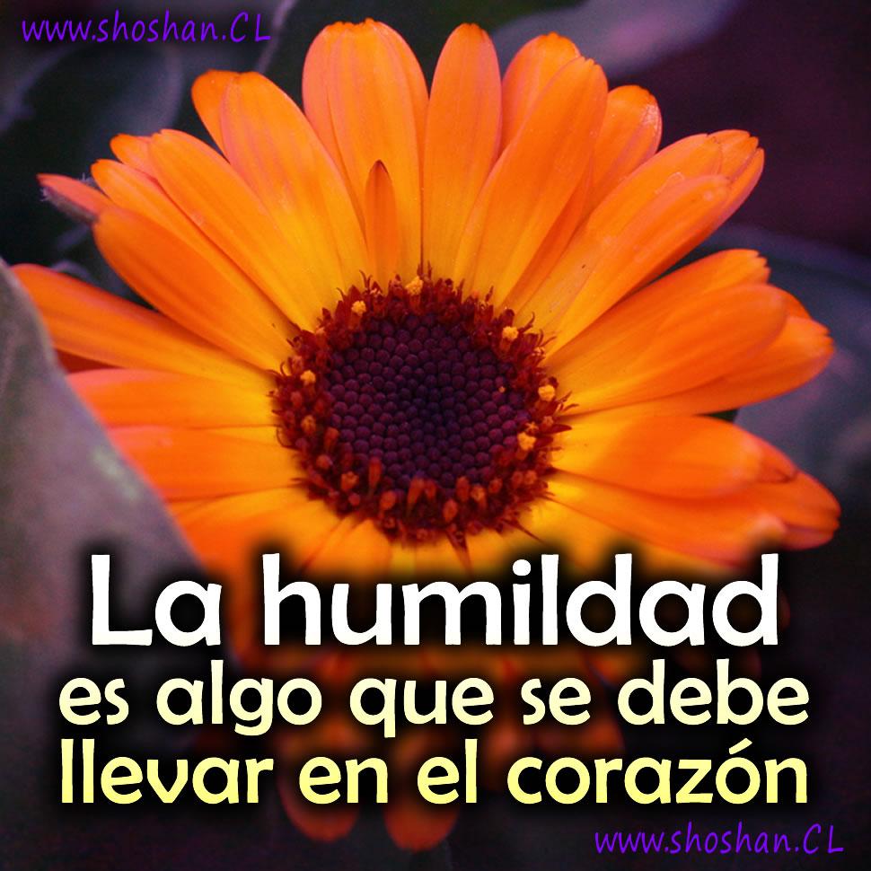 La humildad es algo que se debe llevar en el corazón.