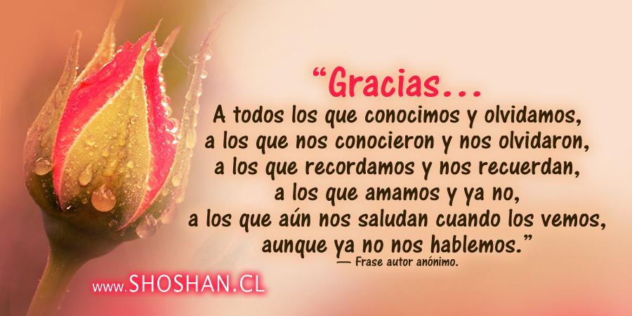 Frases De Agradecimiento Por Graduacion | newhairstylesformen2014.com